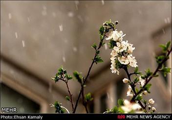بارش برف همه را غافلگیر کرد ، چترهای کرجی به جای باران زیر برف گسترده شد