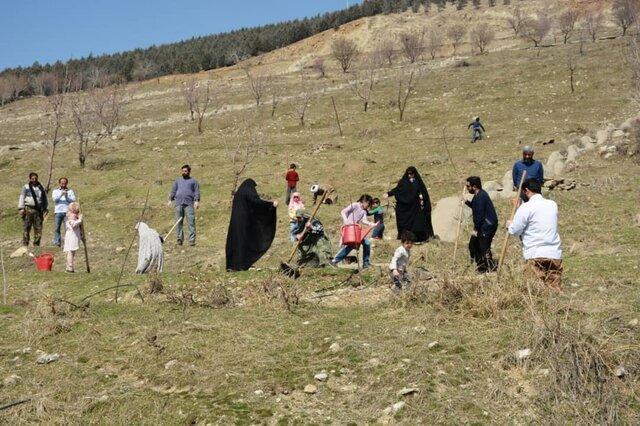 درحاشیه مراسم کاشت نهال در ارتفاعات البرز مطرح شد:کاشت 5 هزار درخت در ارتفاعات پایتخت