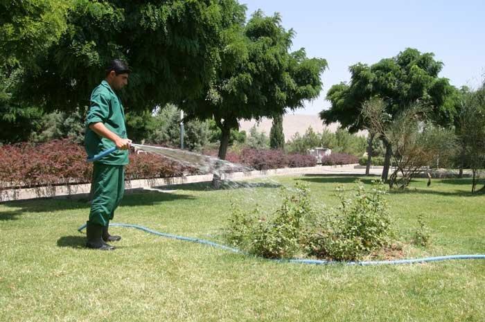 فضای سبز تهران تا سال 1410 با پساب تصفیه خانه ها آبیاری می گردد