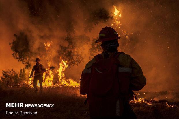 تداوم آتش سوزی در کالیفرنیا، ترامپ شرایط فوق العاده اظهار داشت