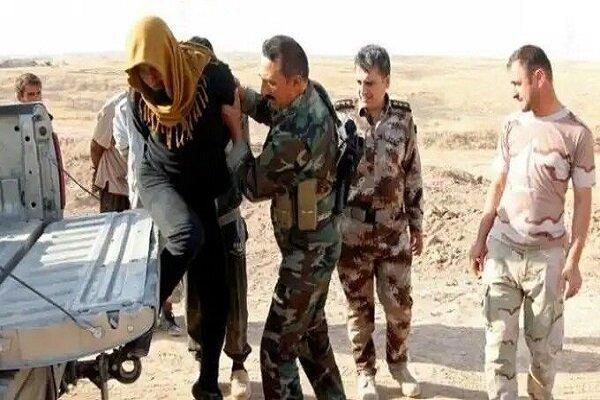 بازداشت سرکرده شاخص داعشی در غرب عراق