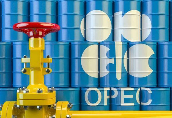 نبرد گلادیاتور های نفتی