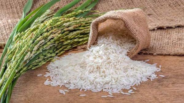 توزیع 100 هزار تن برنج خارجی برای تعدیل قیمت در بازار